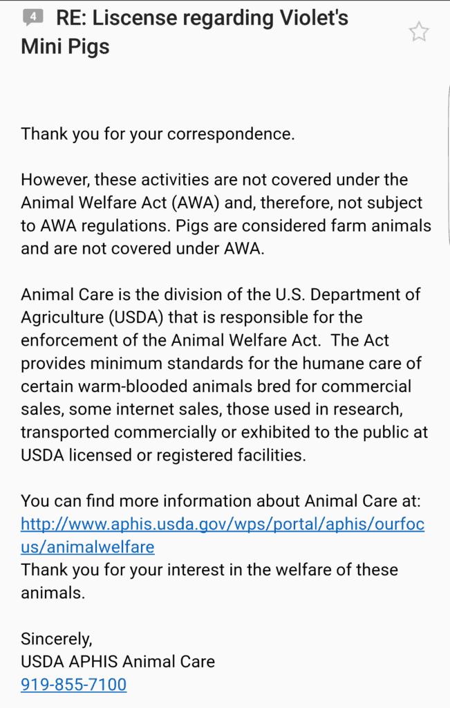 Mini Pig Breeder License Correspondence